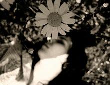 O corpo é o jardim da alma