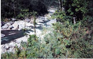 Rafting on the Rio Cangrejal, Honduras