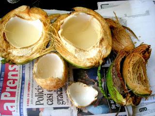 Water coconuts, La Ceiba, Honduras