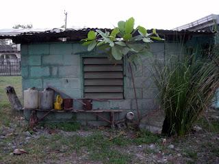 shed, El Porvenir, Honduras