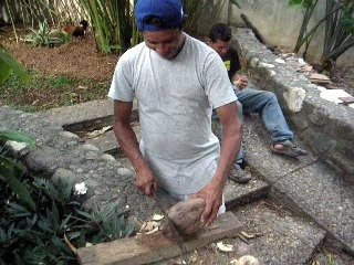 Opening coconut with machete, La Ceiba, Honduras