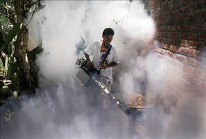 dengue fogging Honduras