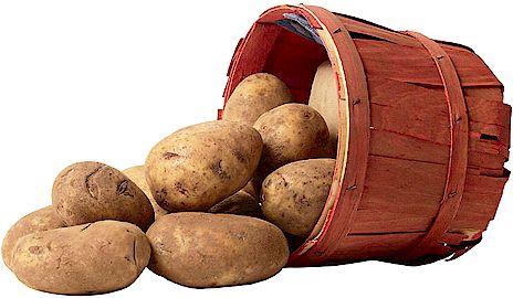 ΠΟΠ για την πατάτα της Ροδόπης;