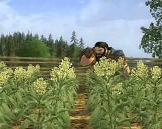 Farming in LOTRO