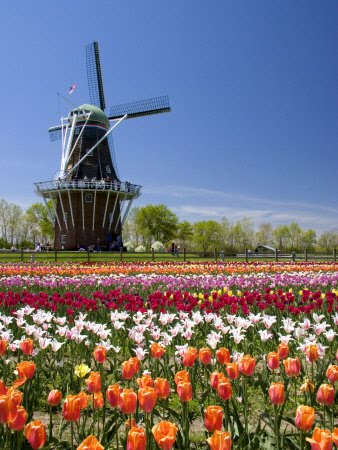 Or you can tour the dutch village which has shops, lots of ...