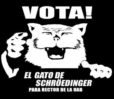 Vota al gato de Schrödinger