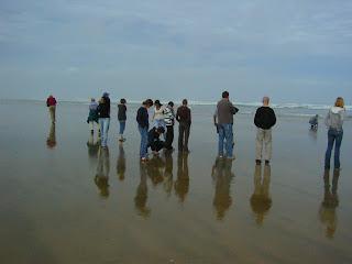 My New Zealand Vacation, Ninety Mile Beach, Photo10423