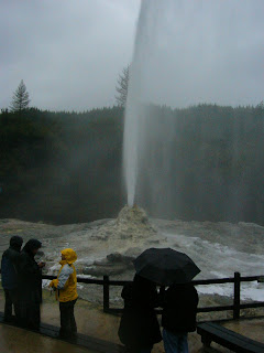 My New Zealand Vacation, Rotorua, Lady Knox Geyser, Photo10532