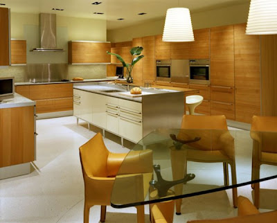 Interior Comfortable Kitchen Design and Living Room