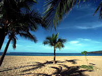 Foto de paisagem de praia