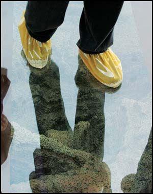 Sapatos especiais obrigatórios na Skywalk.
