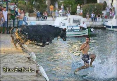 Peão foge do touro correndo sobre as águas