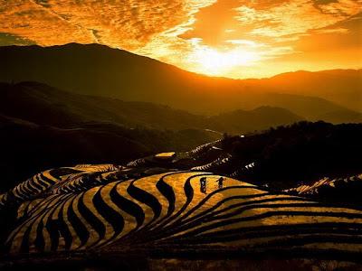 Não só de trabalho vive o homem. A paisagem no por do sol ficou muito bonita refletida nos terraços alagados.
