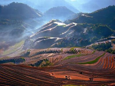 Já cheios de água, os terraços chineses têm suas terras aradas, como preparação do plantio.