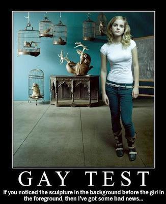 Teste para identificar Gay