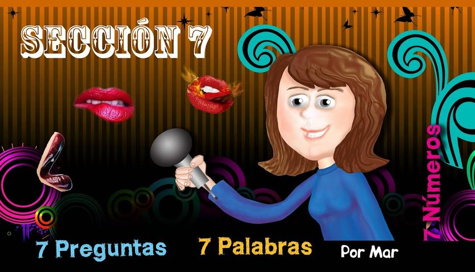 Sección 7