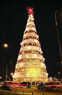 Christmas Tree Light Day
