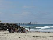 Ocean Beach Dog Park Style.