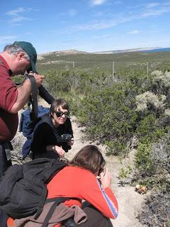 Trekking. Puerto Piramides. Peninsula Valdes.Observacion de Ballenas y Naturaleza. Nature Trek. Whale and Wildlife watching.
