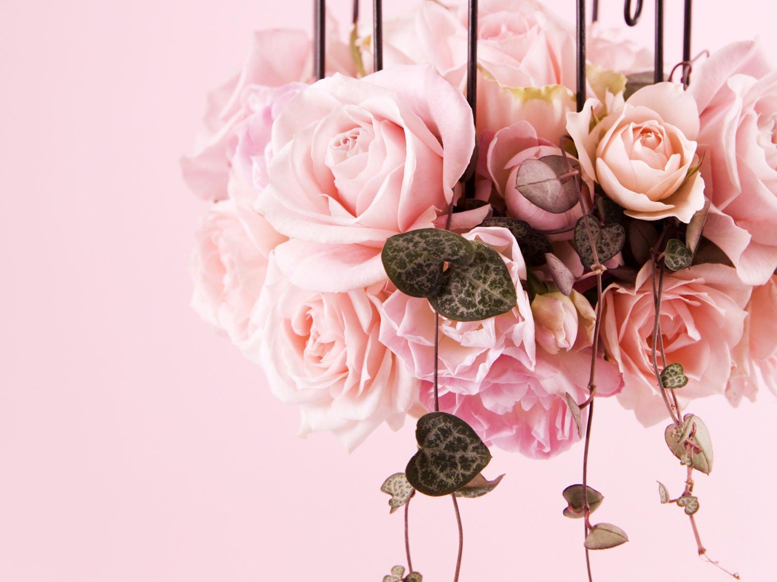 Самые красивые цветы только для тебя моя дорогая картинки от гифки