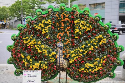 Chiba Flower Festival