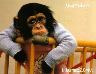 http://3.bp.blogspot.com/_7TX1GbqUt3I/RmSCYK2Q27I/AAAAAAAAArI/z-wBZm8FSFs/s400/aburrimiento.jpg
