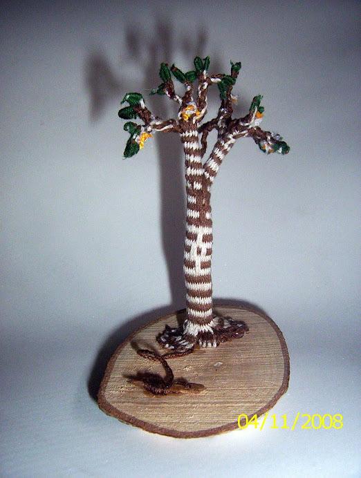 el Canelo ( árbol sagrado mapuche)