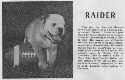 Raider, the bulldog mascot of Concordia High School in Seward, Nebraska.