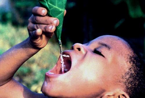 importancia del agua. IMPORTANCIA DEL AGUA