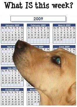 [calendar+skittles.jpg]