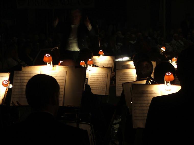 I musicisti all'opera..