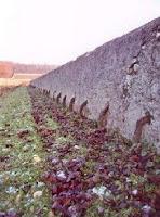 mur de saumur
