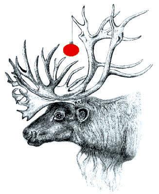 Pedigreetings.com: Christmas- Reindeer