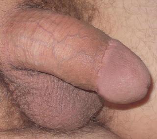 bareback 2 low und tight beschnitten