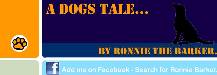 A dogs tale.