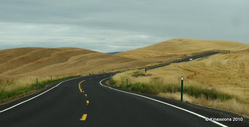 Washington Wheat Fields