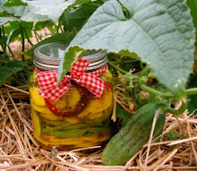Pickle Recipe