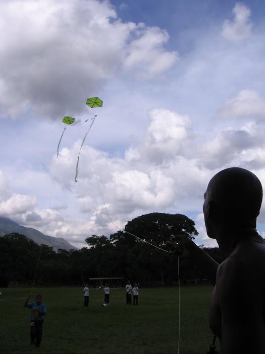 En Parque Miranda volando, aunque esté prohìbido