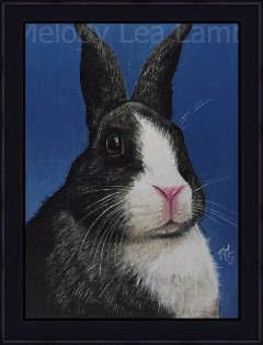 Rabbit Miniature