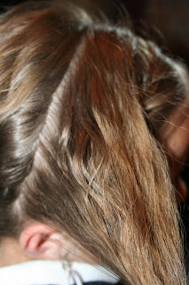 Double-Braid Twistback #4
