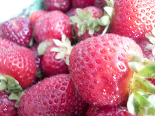 Fresh succulent strawberries from Sandhu Farms purchased from the Main Street Farmers Market at Thornton Park, Vancouver, BC. (2009)