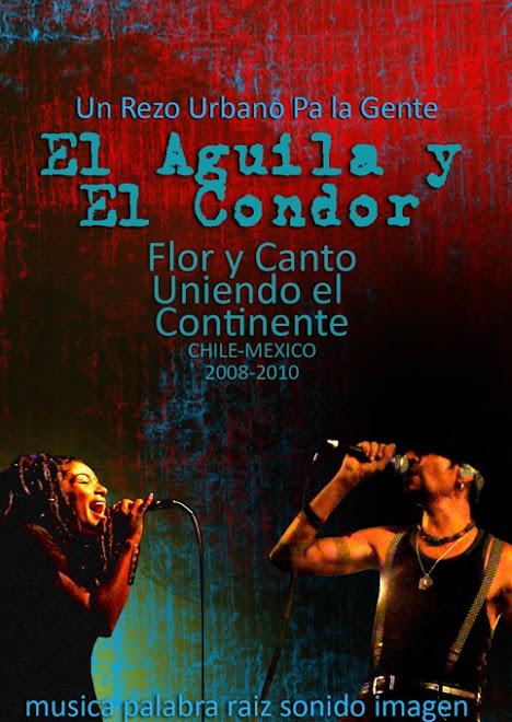 proyecto  AGUILA Y CONDOR