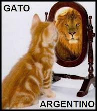 gato argentino