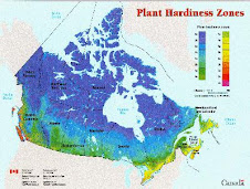 Canada's zone hardiness map
