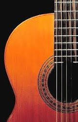 Guitarra que acompaña siempre!