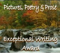 Exceptional Writing Award
