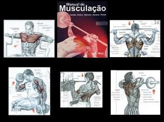 mus. Guia de Musculação