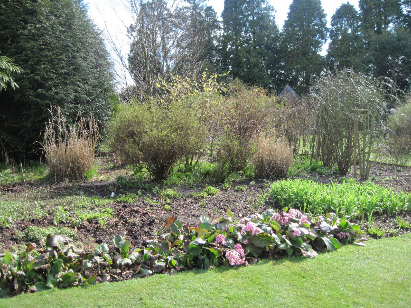 Where Beechmast Falls A Gertrude Jekyll Garden In Early Spring