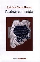 Segundo LIBRO DE POESÍA - Ediciones Hontanar 2008