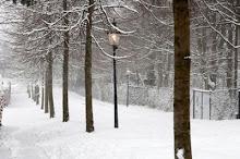 På vei inn i vinterland